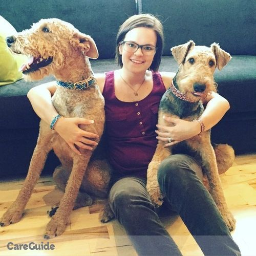 Pet Care Provider Jayme Murrison's Profile Picture
