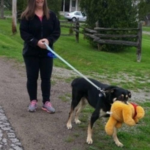Pet Care Provider Patricia L Gallery Image 3