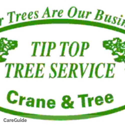 Housekeeper Provider Tip Top Tree Service's Profile Picture