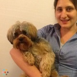 Dog Walker, Pet Sitter in Revere