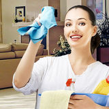 Professional, Confidential, Reliable House Keeper at Your Service!