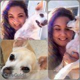 Dog Walker, Pet Sitter in Palo Alto