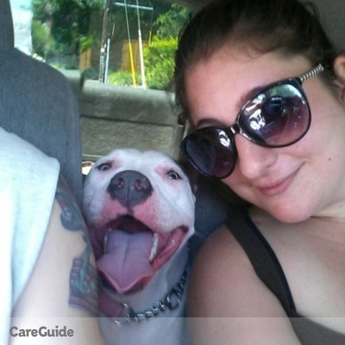 Pet Care Provider Lizzet Tarafa's Profile Picture