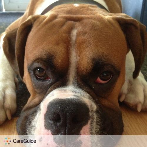 Pet Care Job Ashley Budd's Profile Picture