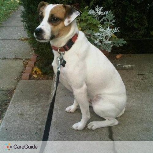 Pet Care Provider Brandi Symons's Profile Picture