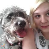 Dog Walker, Pet Sitter in Bensalem