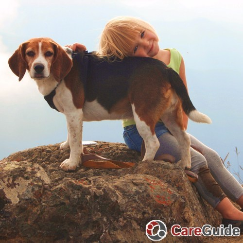 Pet Care Provider Mitchell McKay's Profile Picture