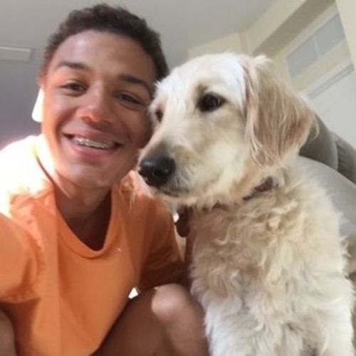 Pet Care Provider Daryl M's Profile Picture