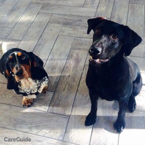 Pet Care Job Christine L's Profile Picture