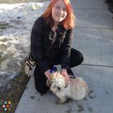 Dog Walker, Pet Sitter in Calgary