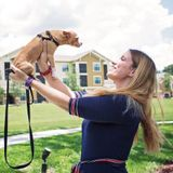 Pet Care Plus More / Your Pet's Home Away From Home