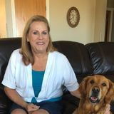 Disciplined and Experienced Housesitter for Hire