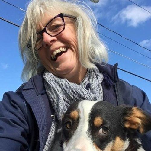 Pet Care Provider Joanne K's Profile Picture