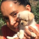 Pet Sitter, who loves the company of animals. Very energetic and compassionate.