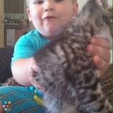 Babysitter Job, Daycare Wanted, Nanny Job in Baldwinsville