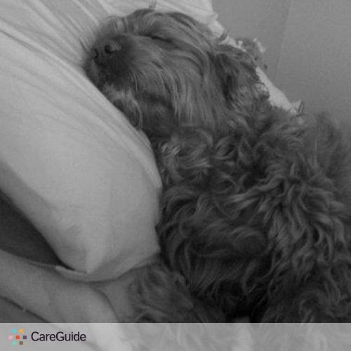 Pet Care Provider Sophia Wale's Profile Picture