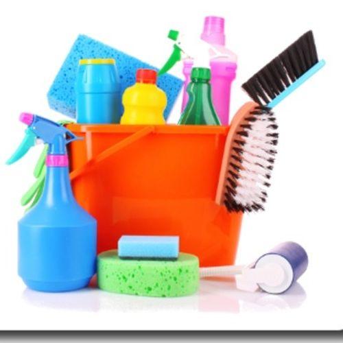 Housekeeper Job Katrina Eaton's Profile Picture