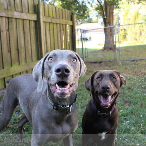 Pet Care Provider Brianna S's Profile Picture