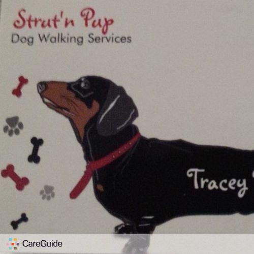 Pet Care Provider Tracey Pierce's Profile Picture