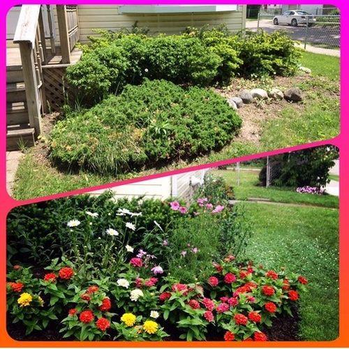 Gardener Provider Danielle E Gallery Image 2