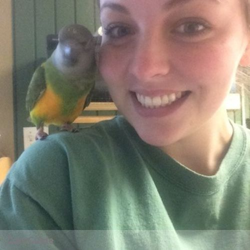 Pet Care Provider Caitlyn Anderson's Profile Picture