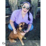 Dog Walker, Pet Sitter in Newton Center