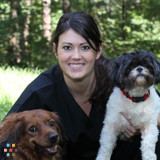 In Good Hands Pet Care - - in-home boarding, pet sitting, dog day care, dog walking