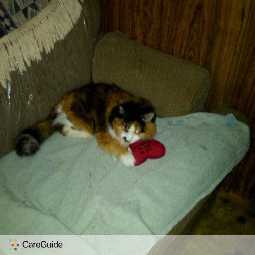Pet Care Provider Georgette M's Profile Picture