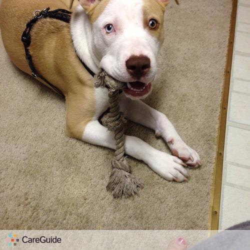 Pet Care Provider Jessica Beyer's Profile Picture