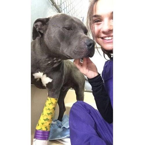 Pet Care Provider Anna Cresta's Profile Picture