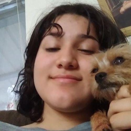 Pet Care Provider Amy Solorzano's Profile Picture