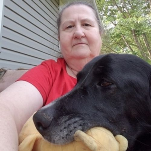 House Sitter Provider Linda Martindale's Profile Picture