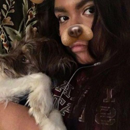 Pet Care Provider Jessica Bustamante Gallery Image 2