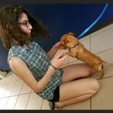 Available: Professional Pet Care Provider in Easton, Pennsylvania