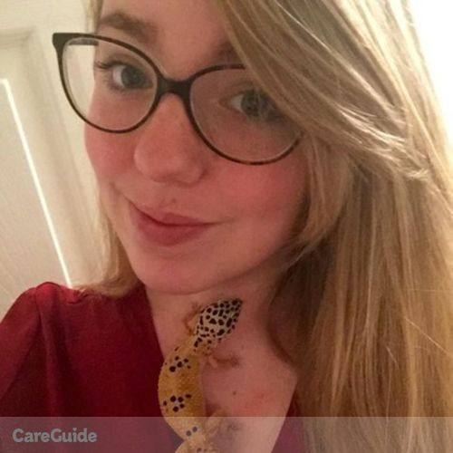 Pet Care Provider Morgan D's Profile Picture
