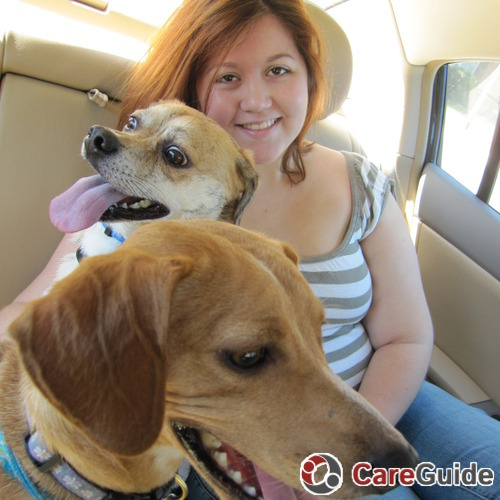 Pet Care Provider Katie Rogers's Profile Picture