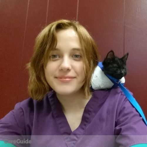 Pet Care Provider Delaney H's Profile Picture