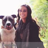 Dog Walker, Pet Sitter in Mc Cordsville