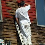 Painter in Saint Joseph