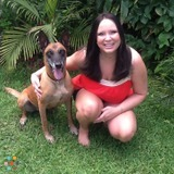 Dog Walker, Pet Sitter in Coral Springs