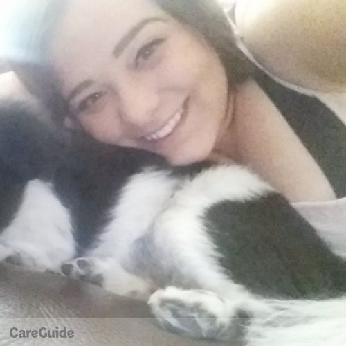 Pet Care Provider Stephanie Dolenga's Profile Picture