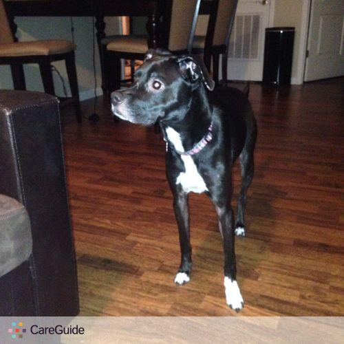 Pet Care Job Ashley Gesseck's Profile Picture