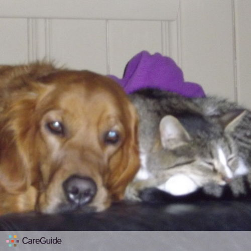 Pet Care Provider Stephanie Cook's Profile Picture