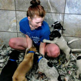 Pet sitter experienced with all kinds of pets