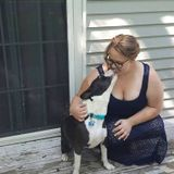 Zion (Township) Dog Sitter Available For Being Hired in Illinois
