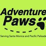 Dog Hiking Service Santa Monica
