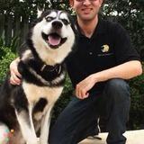 Dog Walker, Pet Sitter in Margate
