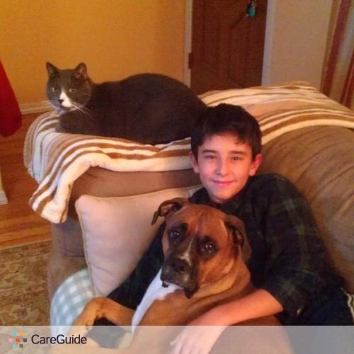 Pet Care Provider sandra ferreira's Profile Picture