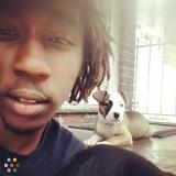 Dog Walker, Pet Sitter in Sicklerville