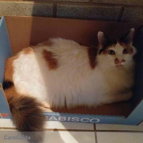 Pet Care Provider Lisa Colburn's Profile Picture